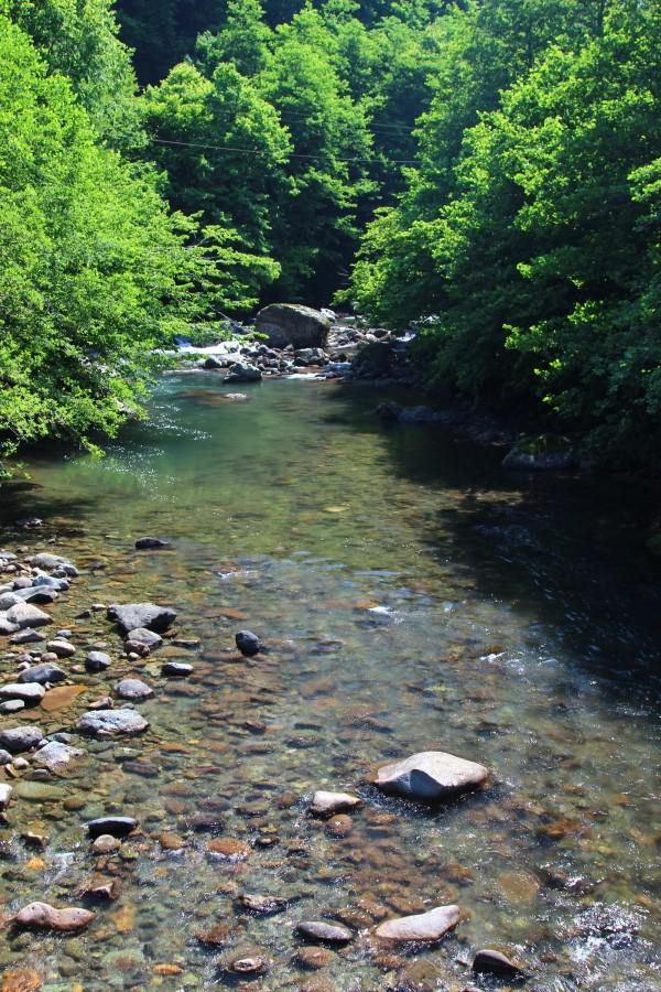 Mtirala_river